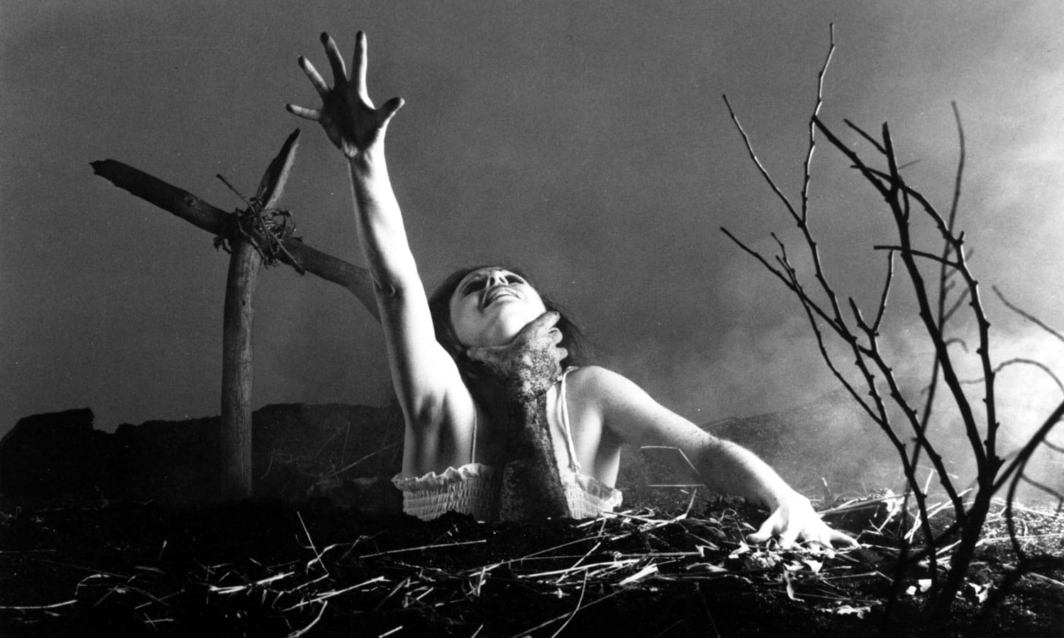 5 Classic Horror Flicks And What To Drink While Watching Them
