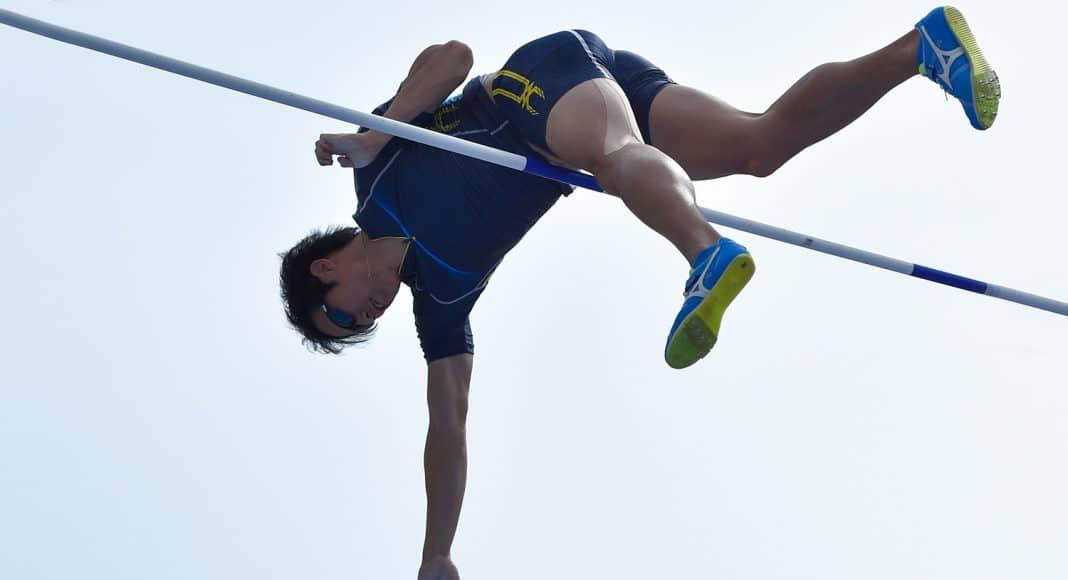penis pole vaulting