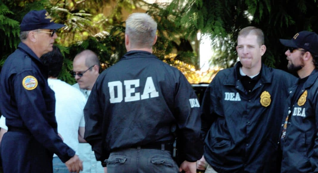 everything you need to know about the deas refusal to declassify marijuana