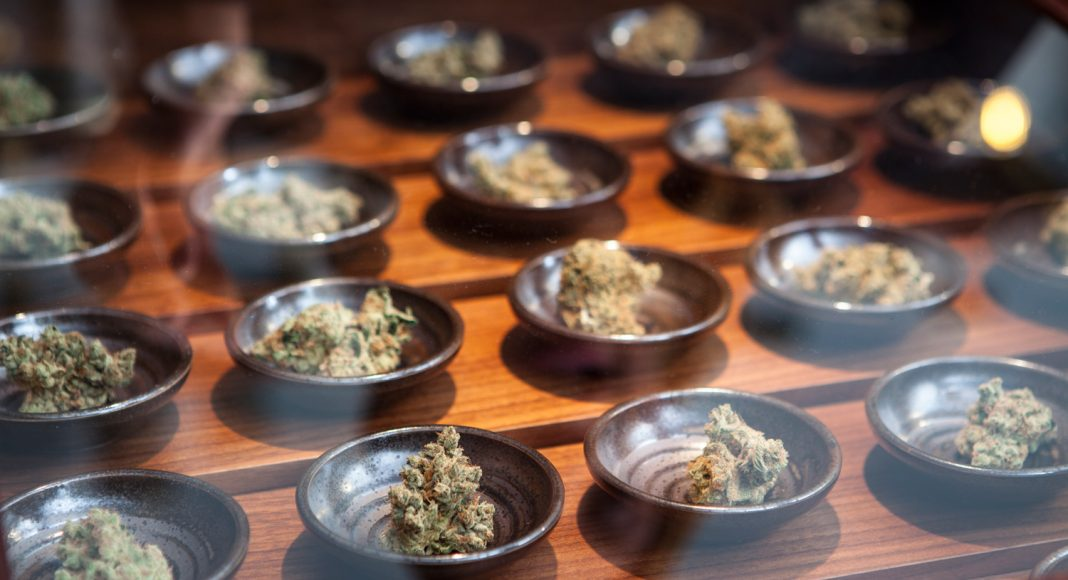 Oregon Marijuana Retailers Pass Decoy Test