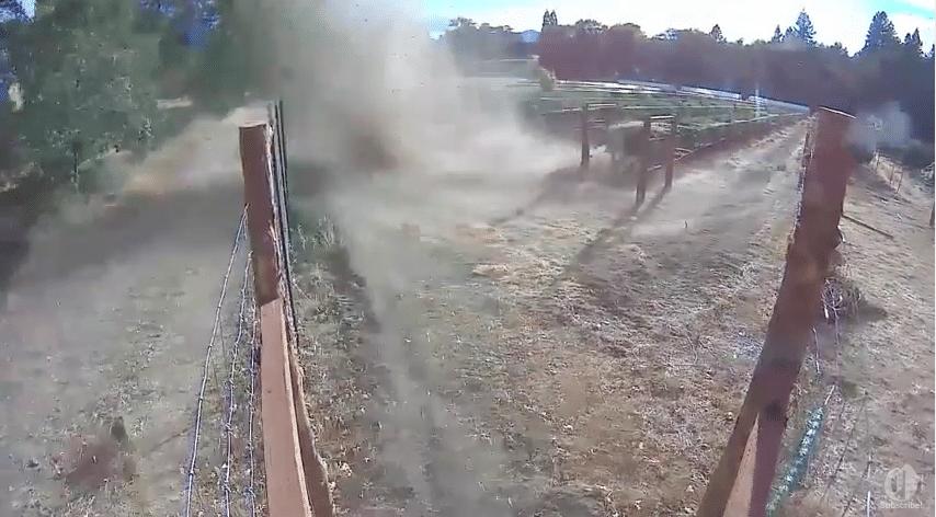Weed Tornado