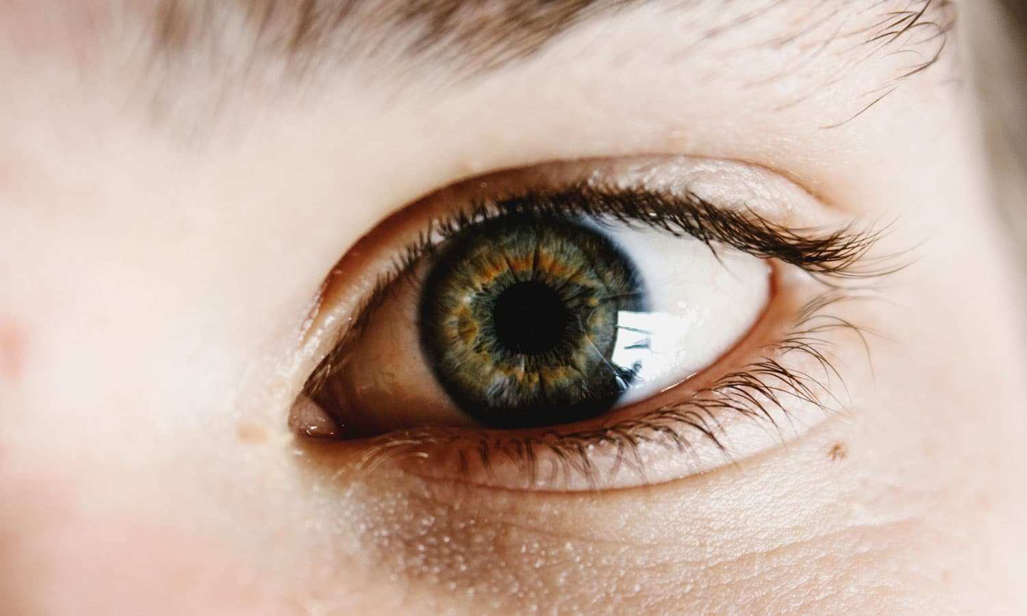 how medical marijuana relieves glaucoma's intraocular pressure