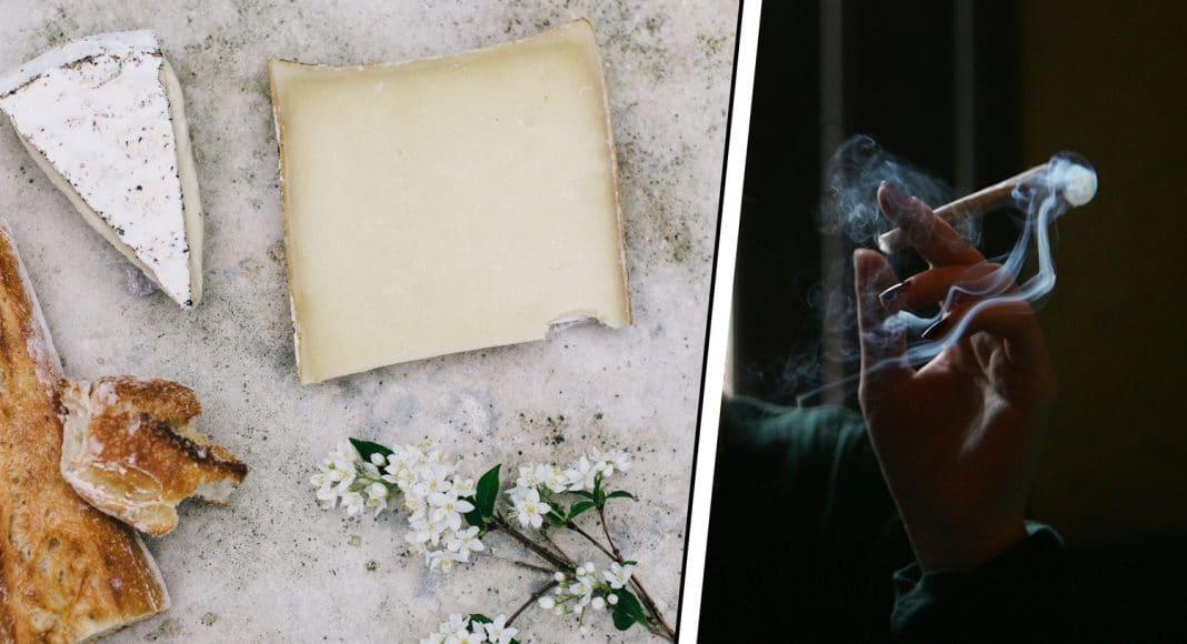 marijuana and cheese pairings