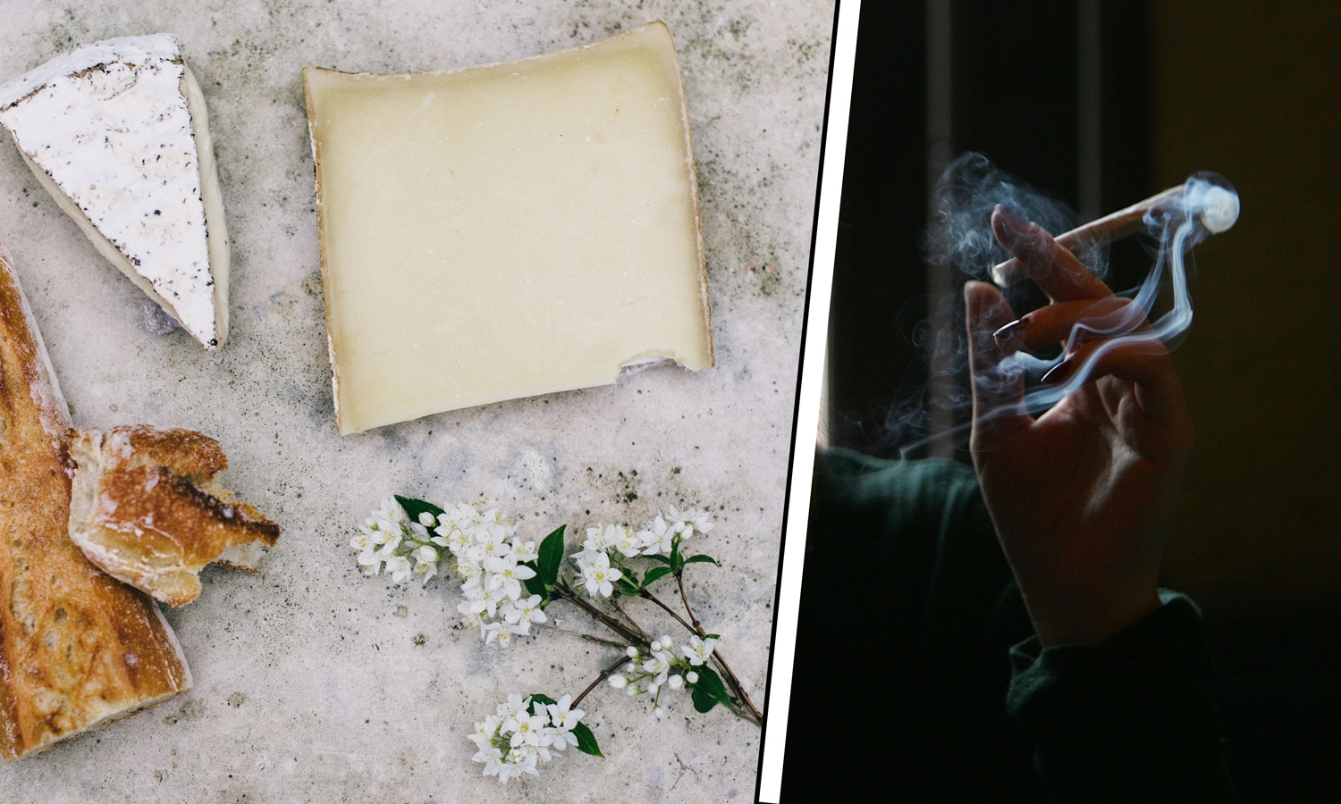 marijuana and cheese pairings