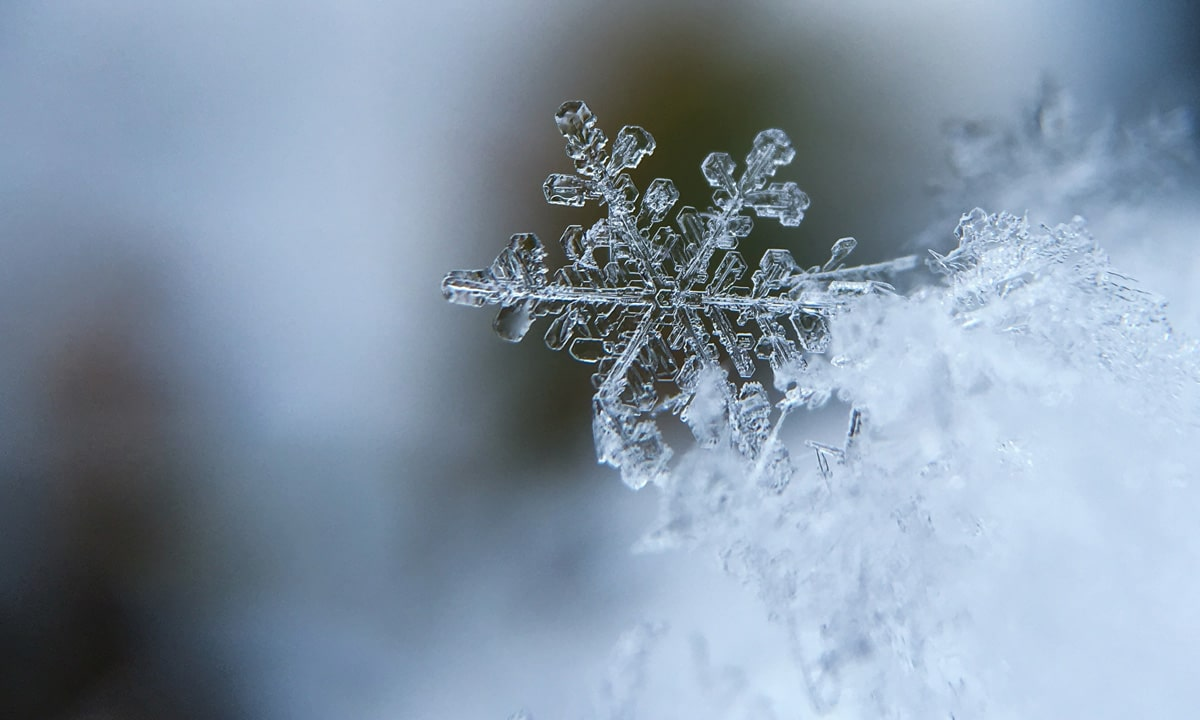10 Beautiful Snowflakes That Make Winter Storms Tolerable