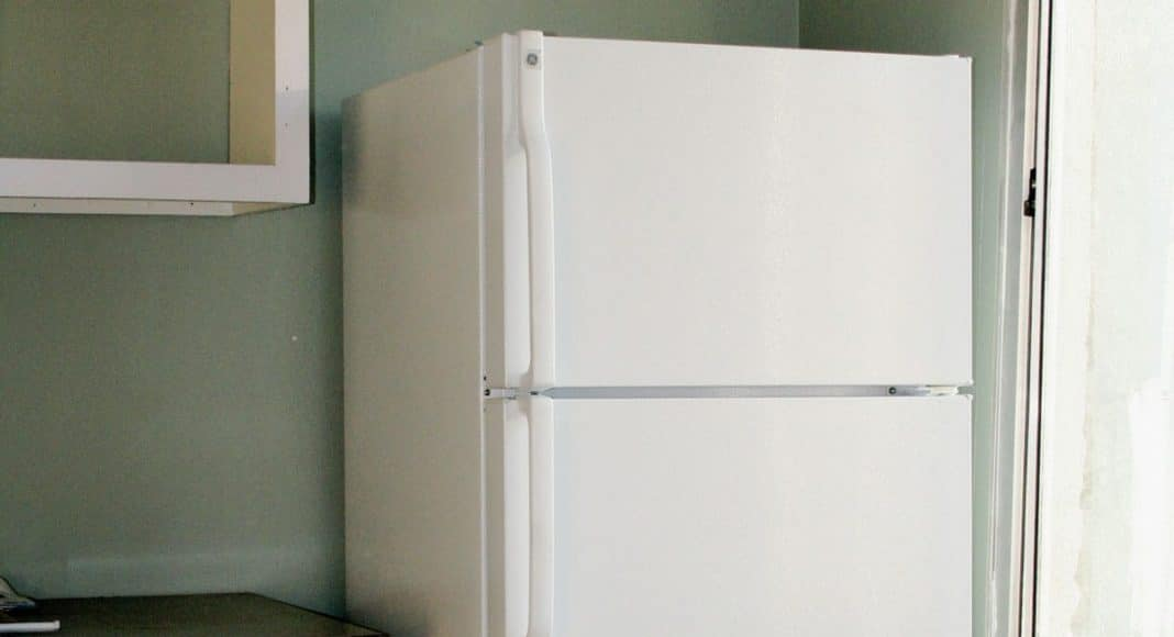 heroic woman busted for allegedly raiding drakes fridge