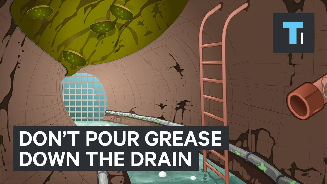 This Is What Happens When You Pour Grease Down The Drain