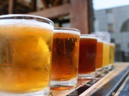 Probiotic Sour Beer