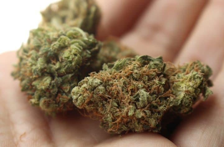 Marijuana Kill