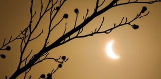 Photograph The Eclipse