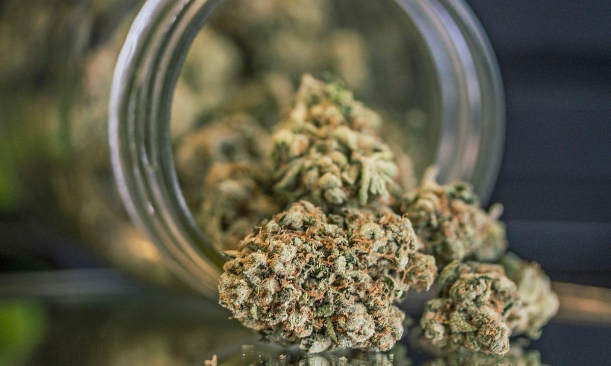 Luxury Marijuana Company