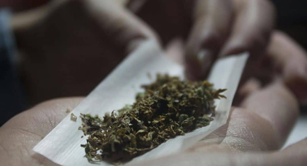 Marijuana's popularity
