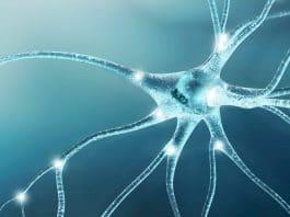 Neuropathy
