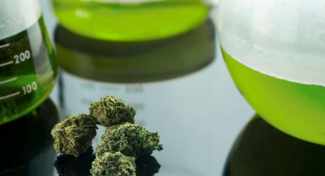 Federal Cannabis Research