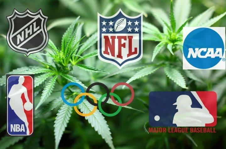 Test For Marijuana