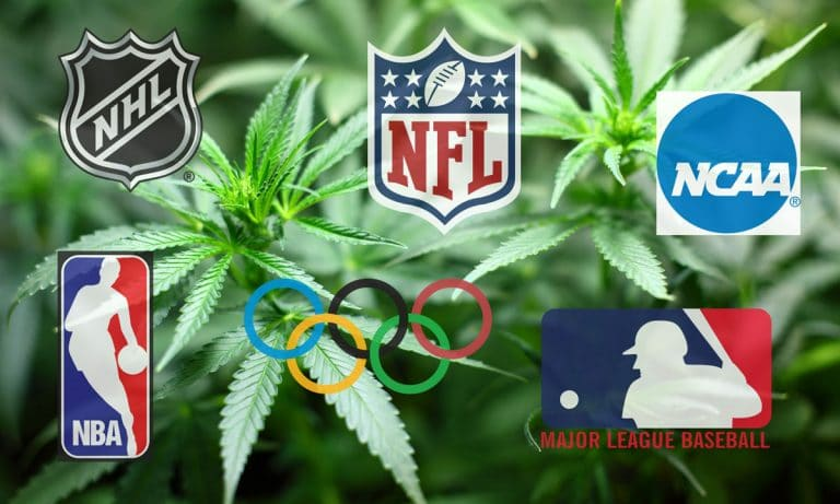 How Each Of America's Sports Leagues Test For Marijuana
