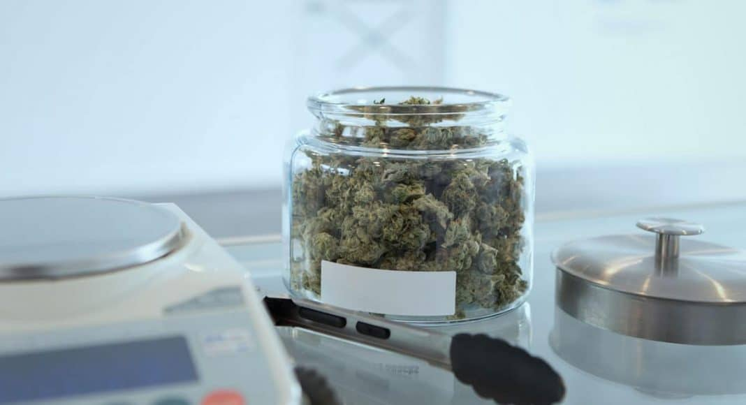 mythbusters 5 medical cannabis beliefs that are completely wrong