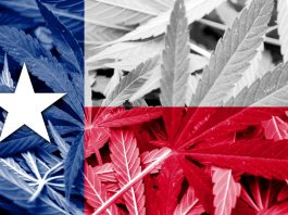 This Texas Lawmaker Is Blocking Congress From Voting On Marijuana