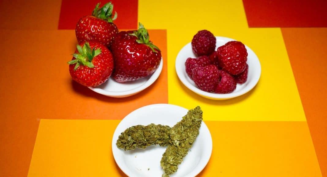 Cannabis Fruit Leathers