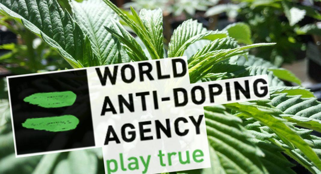 World Anti-Doping Agency