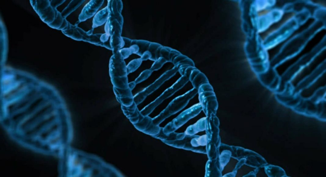 DNA dating app