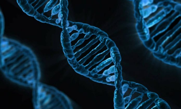 nice genes this new dating app using your dna to find your perfect match
