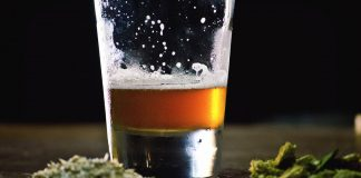 Brewers File Patent To Produce Beer Made Entirely From Marijuana