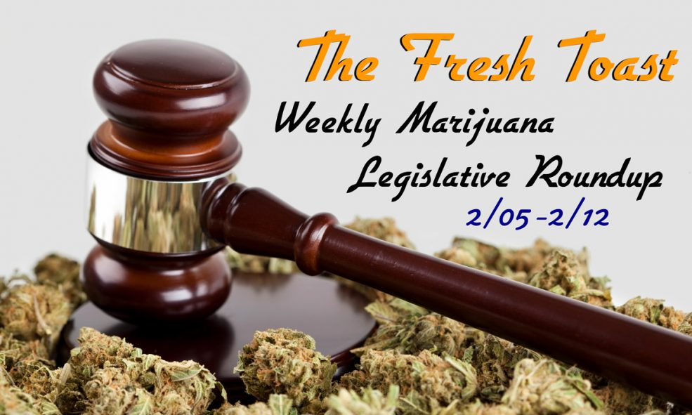 The Fresh Toast Marijuana Legislative Roundup: Feb. 12