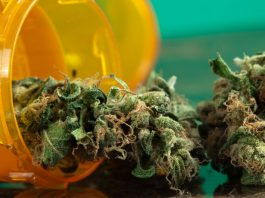 Do You Qualify? NJ Has A New List Of MMJ Conditions