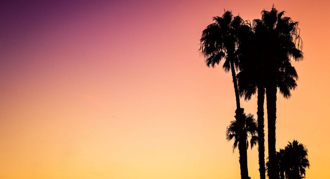 California's 'Marijuana Disneyland' Dream Is Dead