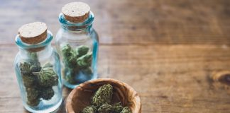 Marijuana 101: A Simple Guide To Marijuana Tasting