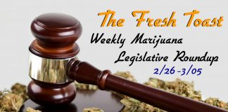 The Fresh Toast Marijuana Legislative Roundup: March 5