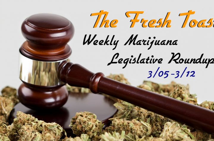 The Fresh Toast Marijuana Legislative Roundup: March 12