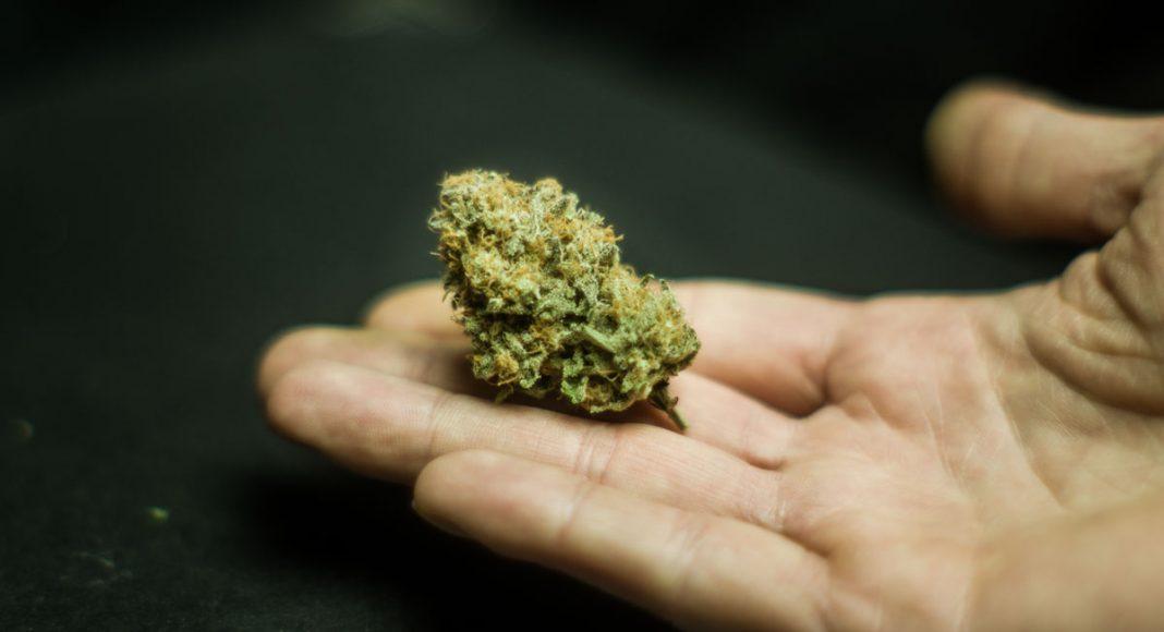 Survey Says: Using Marijuana Is Morally Acceptable