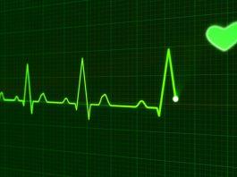 Kevin Smith's Doctors Say Marijuana Saved Him From Heart Attack