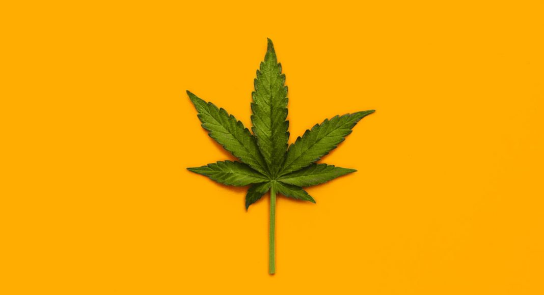 What Is Marijuana 'Reclaim' And Is It Bad For You?