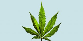 93% Of Americans Now Support Medical Marijuana Legalization