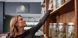 Vermont Kills Bill To Tax And Regulate Recreational Marijuana