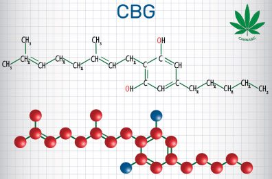 The Healing Benefits Of Marijuana's CBG