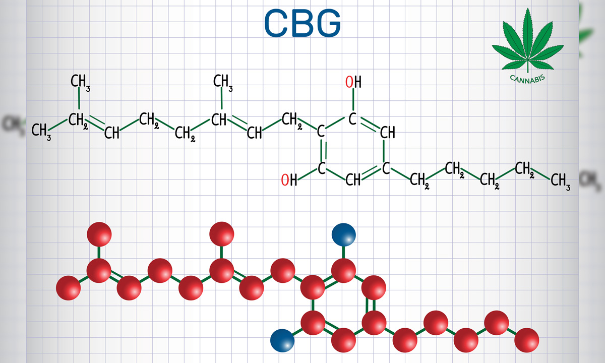 The Healing Benefits Of Marijuana's CBG