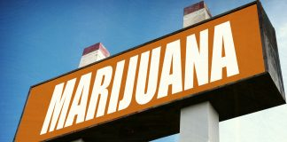 Bipartisan Bill Would Finally Put An End To Cannabis Prohibition