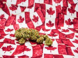 How Canadian Cannabis Will Help Fuel 2022 Beijing Olympics