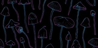 Magic Mushrooms Could Help Treatment-Resistant Depression