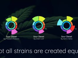 This New App Will Change The Way You Buy Cannabis