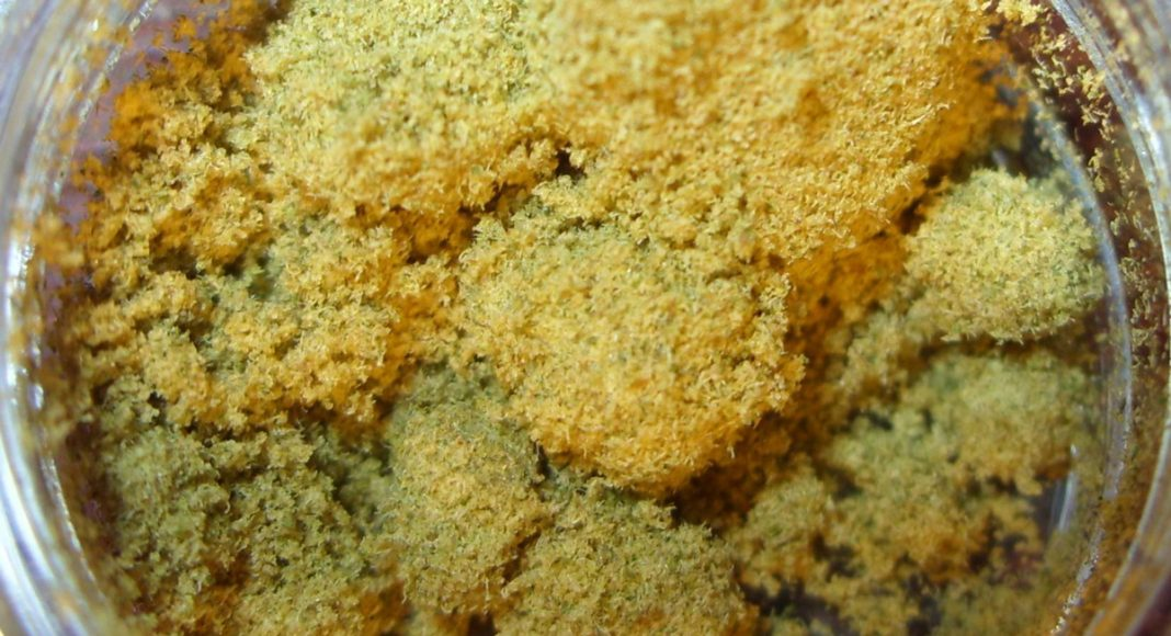 Marijuana 101: How Can Kief Be Used Medically?