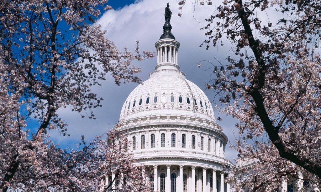A Dozen Governors Urge Congress To Pass Marijuana STATES Act