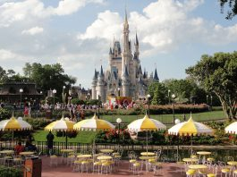 Here's Why There Are No Mosquitos At Disney World