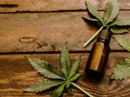 Nueroscientists Claims 'Vitamin Weed' Slows Down Aging Process