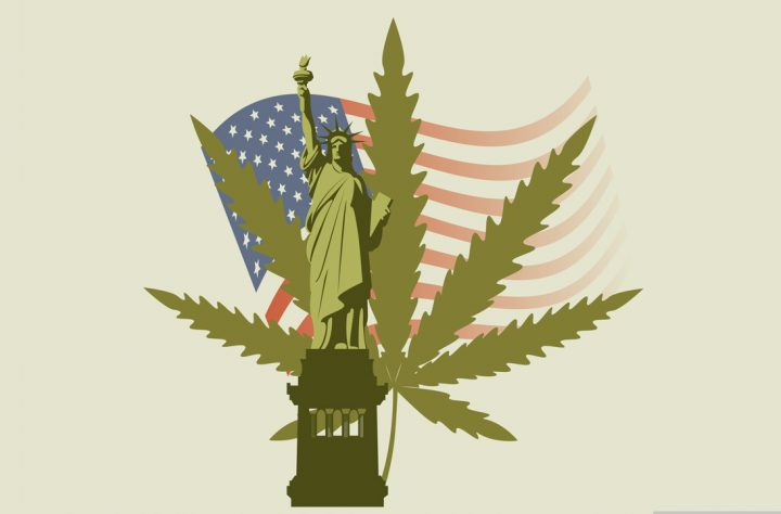 New York Needs Legalized Marijuana, State-Mandated Study Shows