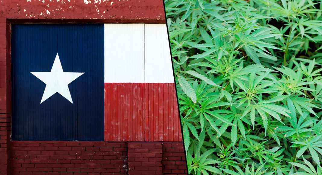 Texas Republicans Now Support Cannabis Decriminalization